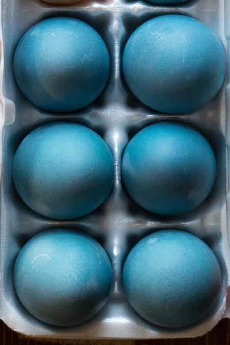 egg dye -02796.jpeg