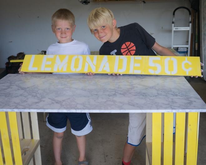 lemonade stand-03203