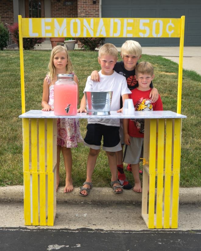 lemonade stand-03219